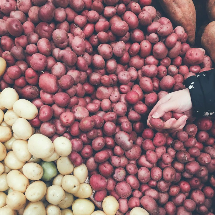 Nie jedz zzieleniałych i kiełkujących ziemniaków!